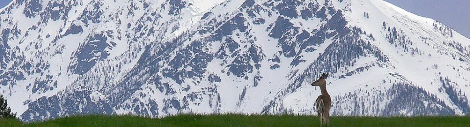 Montana – Smart Getaways for Couples