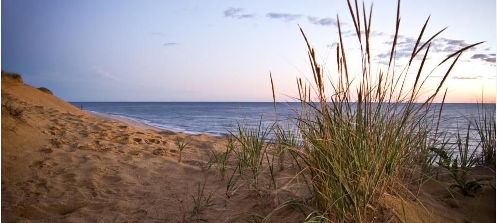 dunes-cape-cod-1500