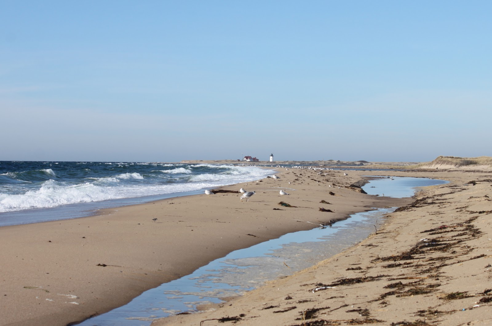 Herring Cove Beach Cape Cod Weekend Getaways From Nyc